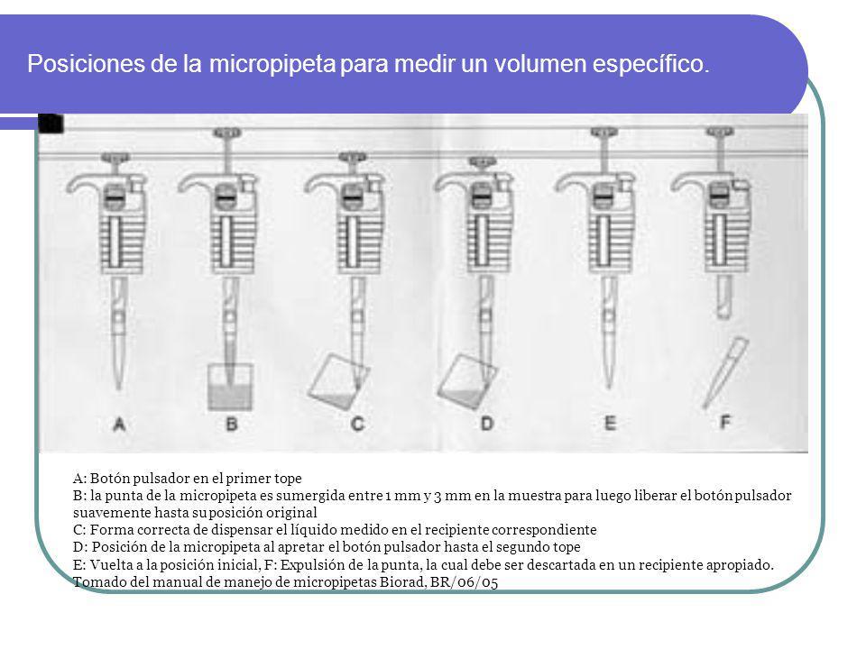 Posiciones de la micropipeta para medir un volumen específico.