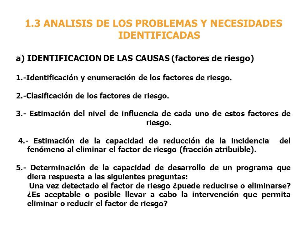 1.3 ANALISIS DE LOS PROBLEMAS Y NECESIDADES IDENTIFICADAS