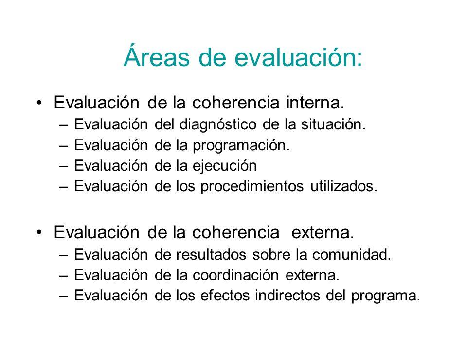 Áreas de evaluación: Evaluación de la coherencia interna.