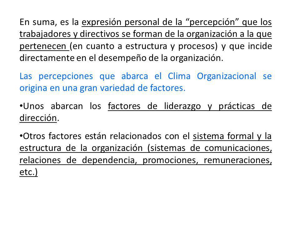 En suma, es la expresión personal de la percepción que los trabajadores y directivos se forman de la organización a la que pertenecen (en cuanto a estructura y procesos) y que incide directamente en el desempeño de la organización.