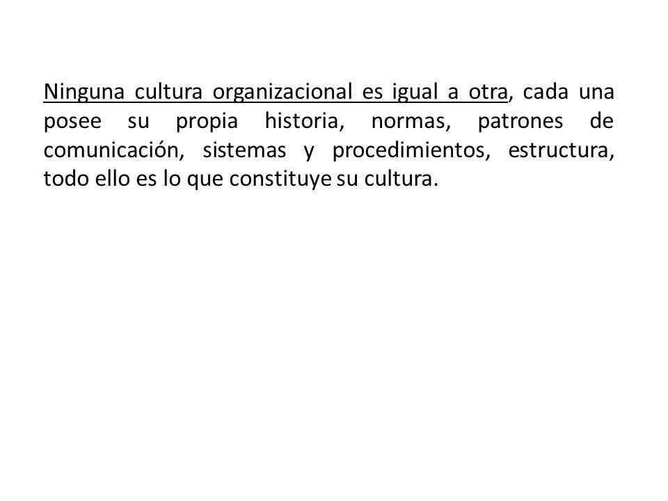 Ninguna cultura organizacional es igual a otra, cada una posee su propia historia, normas, patrones de comunicación, sistemas y procedimientos, estructura, todo ello es lo que constituye su cultura.