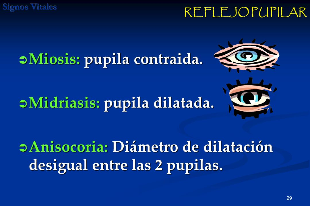 Miosis: pupila contraida. Midriasis: pupila dilatada.