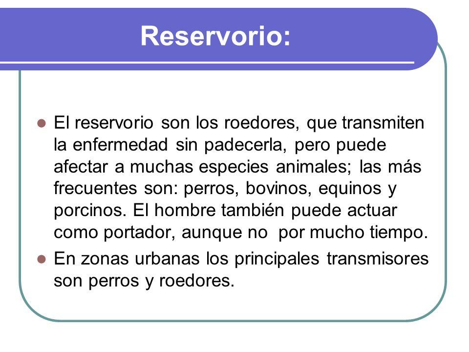 Reservorio: