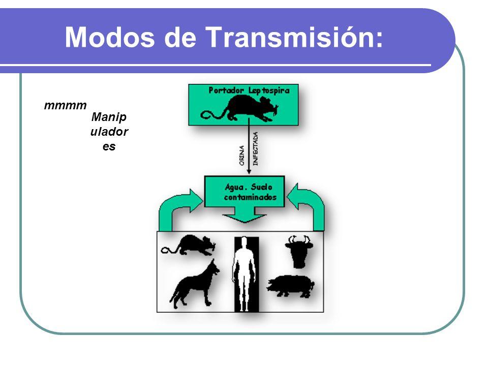Modos de Transmisión: mmmm Manipuladores