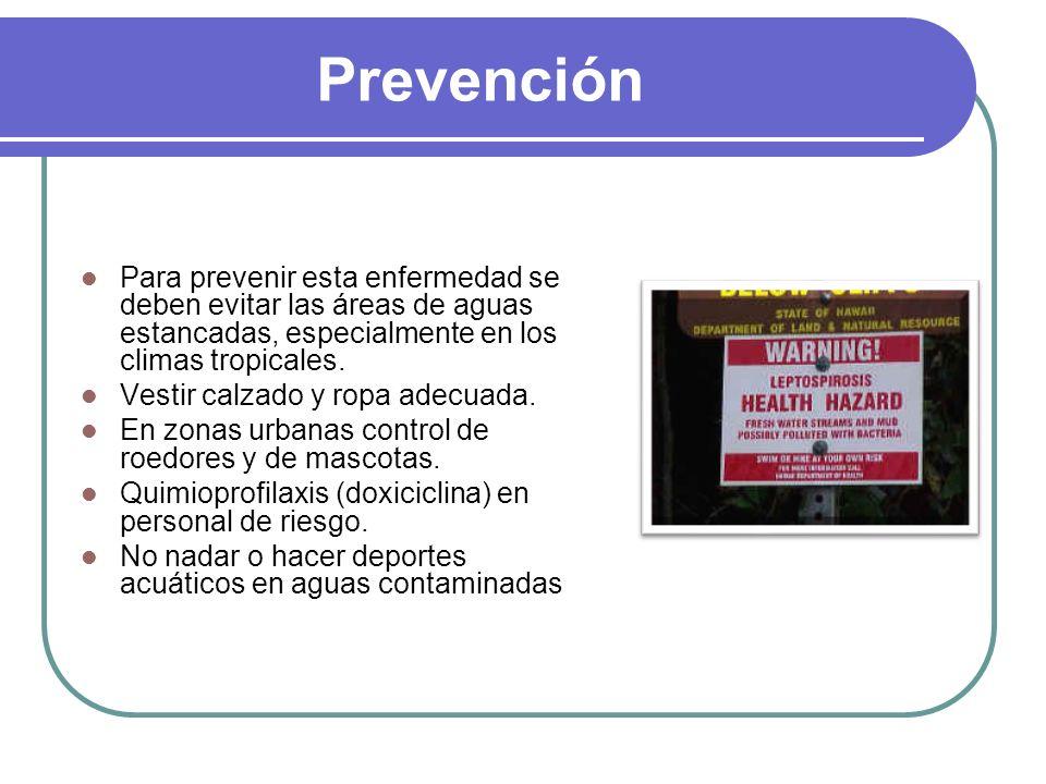 Prevención Para prevenir esta enfermedad se deben evitar las áreas de aguas estancadas, especialmente en los climas tropicales.