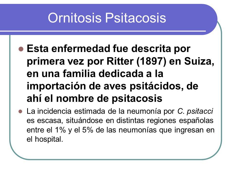 Ornitosis Psitacosis