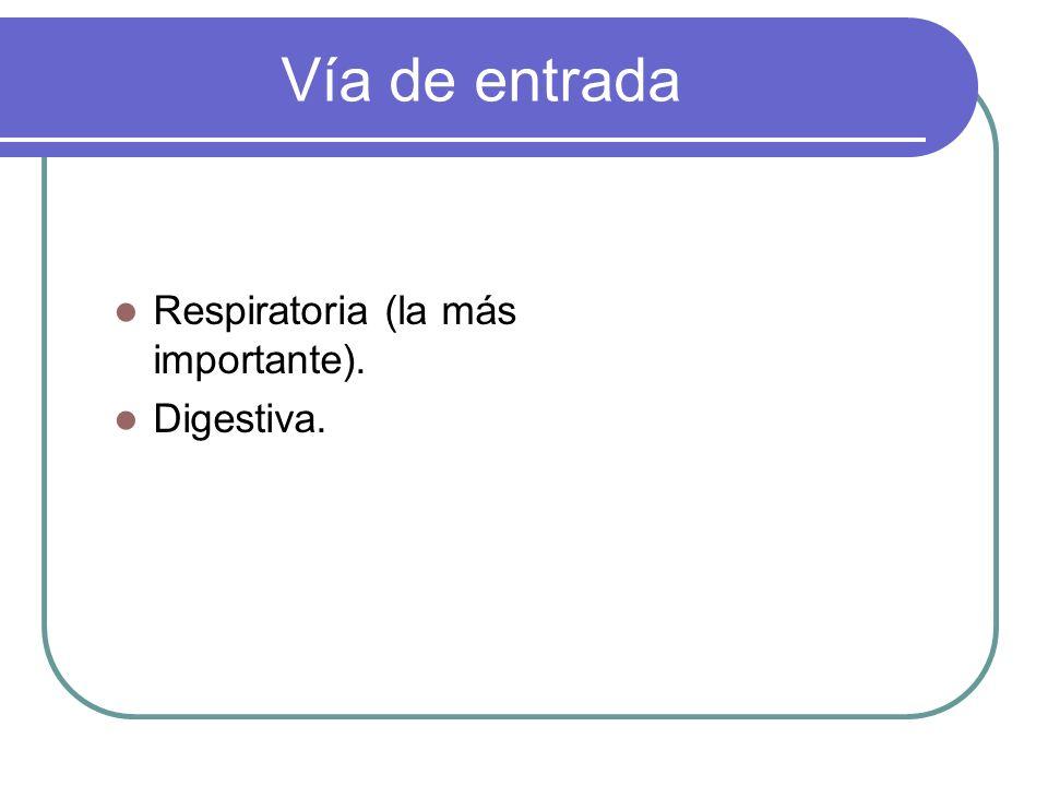 Vía de entrada Respiratoria (la más importante). Digestiva.