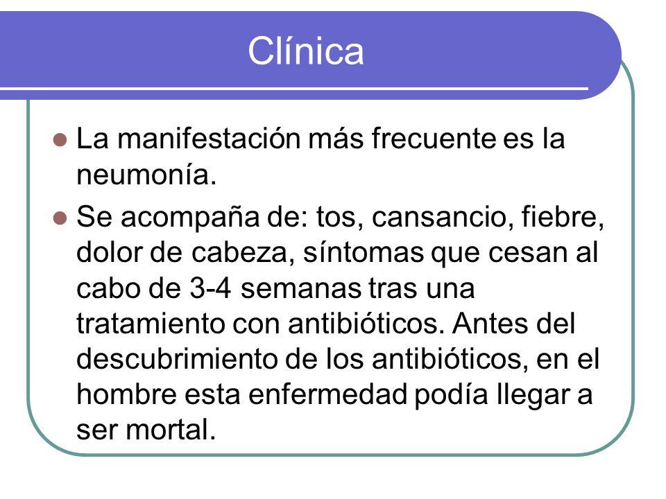 Clínica La manifestación más frecuente es la neumonía.