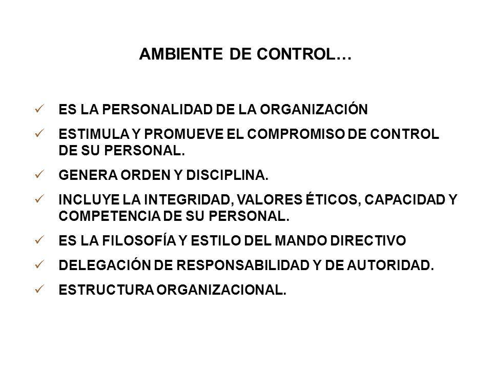AMBIENTE DE CONTROL… ES LA PERSONALIDAD DE LA ORGANIZACIÓN