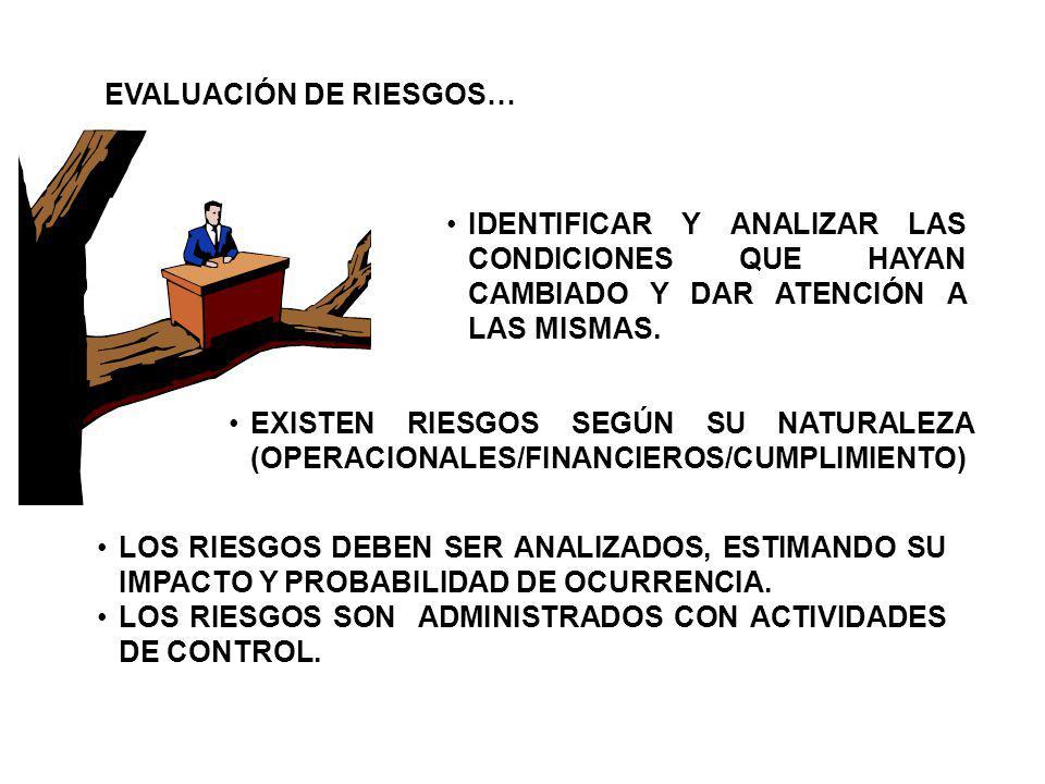 EVALUACIÓN DE RIESGOS…