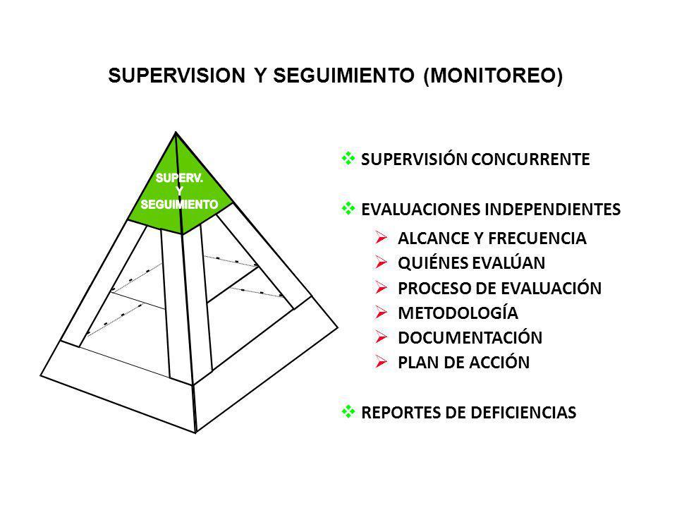 SUPERVISION Y SEGUIMIENTO (MONITOREO)