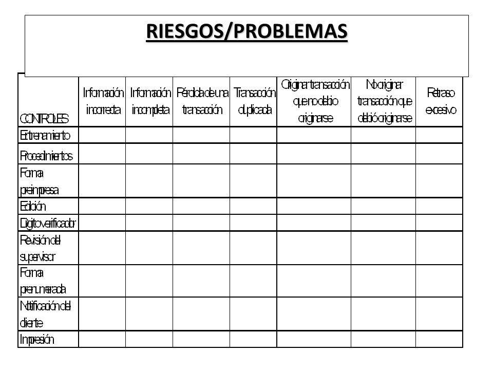 RIESGOS/PROBLEMAS