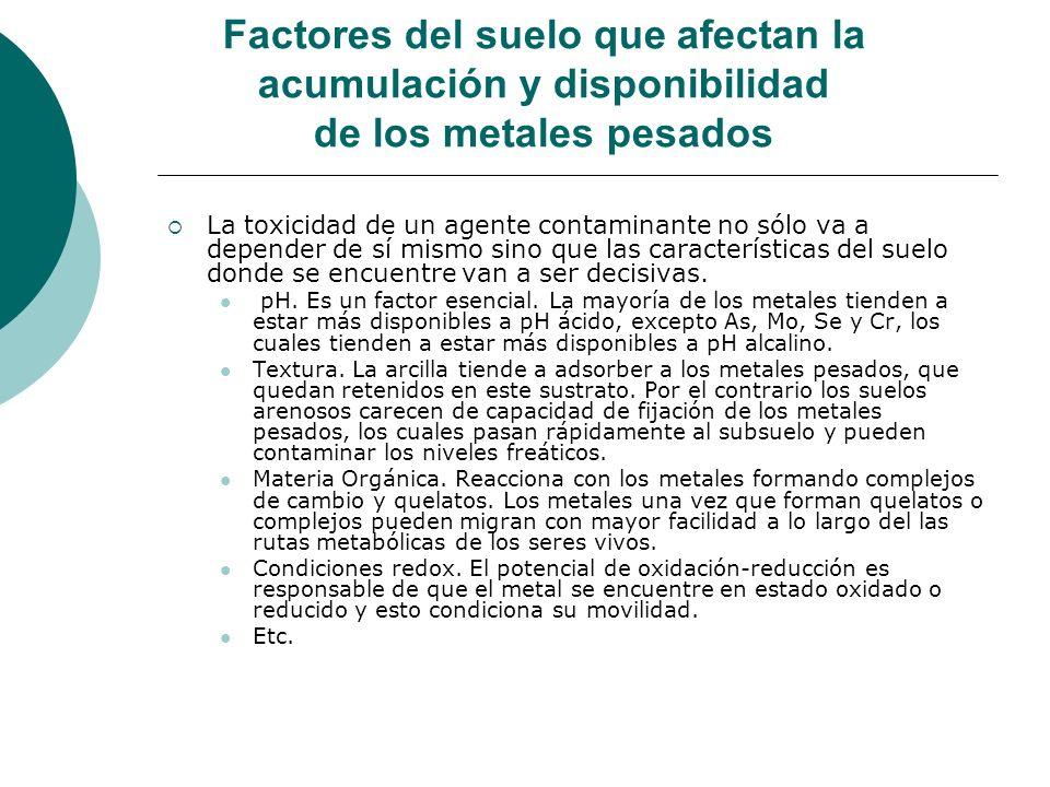 Factores del suelo que afectan la acumulación y disponibilidad de los metales pesados