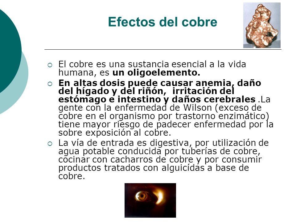 Efectos del cobre El cobre es una sustancia esencial a la vida humana, es un oligoelemento.