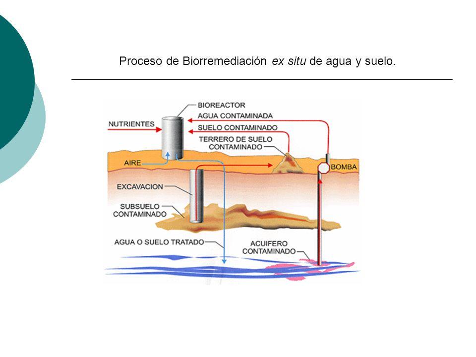 Proceso de Biorremediación ex situ de agua y suelo.