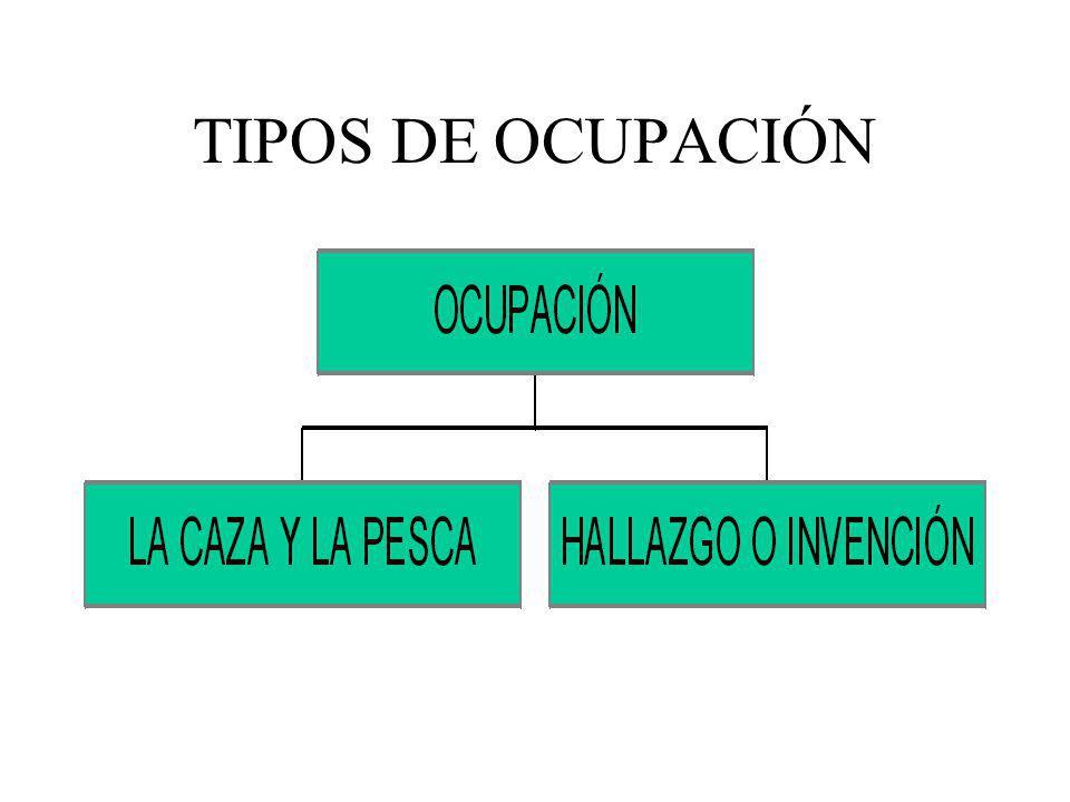 TIPOS DE OCUPACIÓN