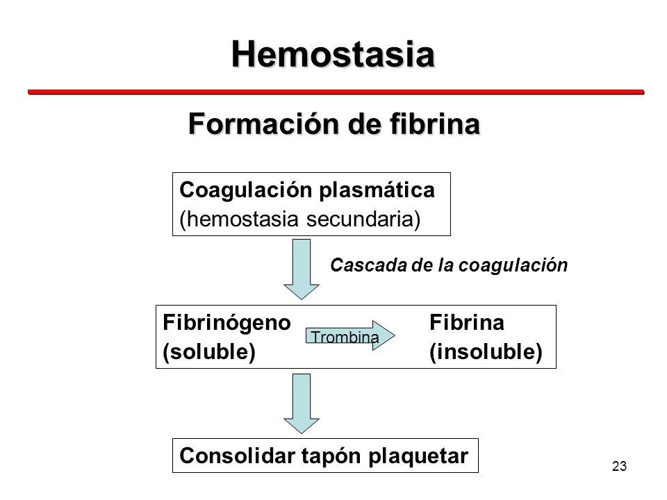 Hemostasia Formación de fibrina Coagulación plasmática