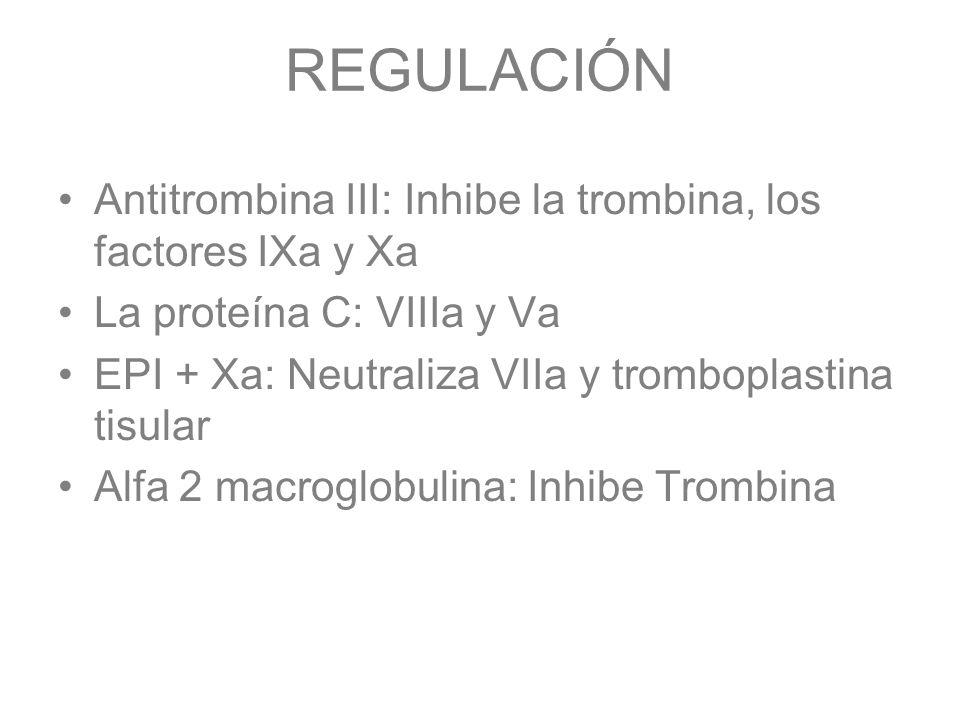 REGULACIÓN Antitrombina III: Inhibe la trombina, los factores IXa y Xa
