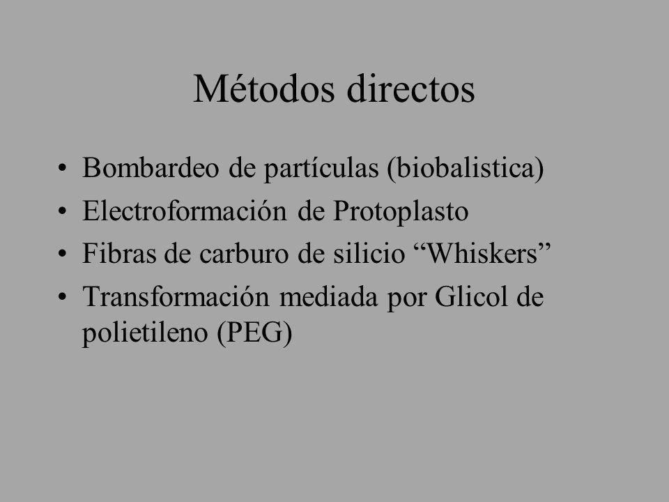Métodos directos Bombardeo de partículas (biobalistica)