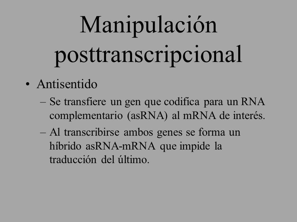 Manipulación posttranscripcional