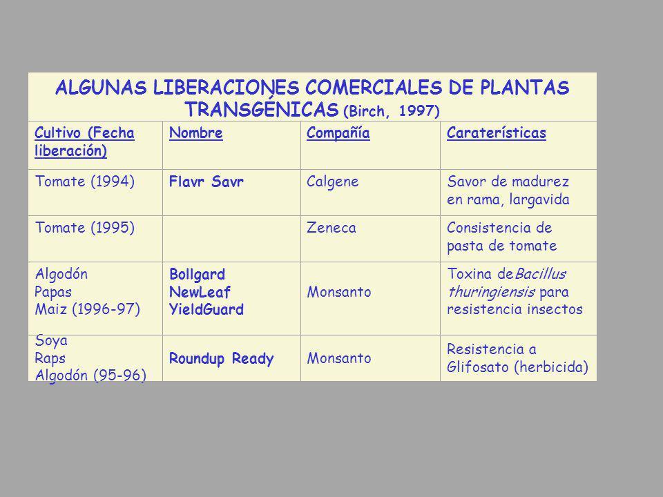 ALGUNAS LIBERACIONES COMERCIALES DE PLANTAS TRANSGÉNICAS (Birch, 1997)