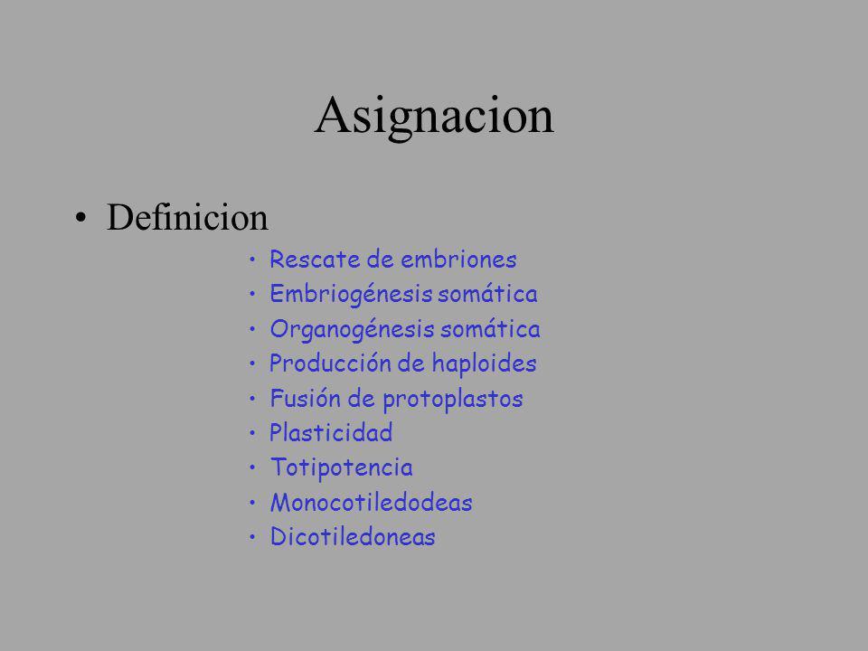 Asignacion Definicion Rescate de embriones Embriogénesis somática