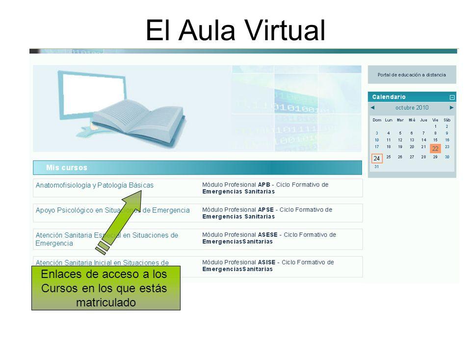 El Aula Virtual Enlaces de acceso a los Cursos en los que estás