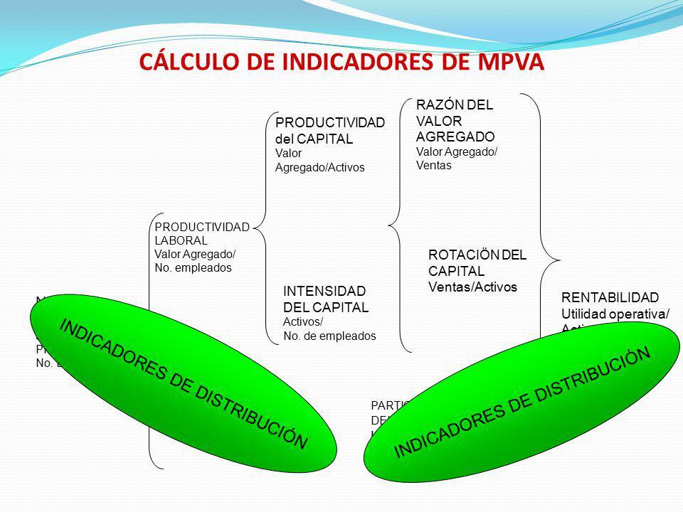 CÁLCULO DE INDICADORES DE MPVA