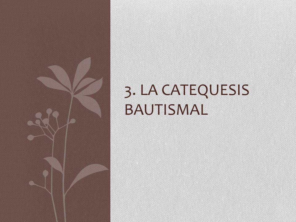 3. La catequesis bautismal