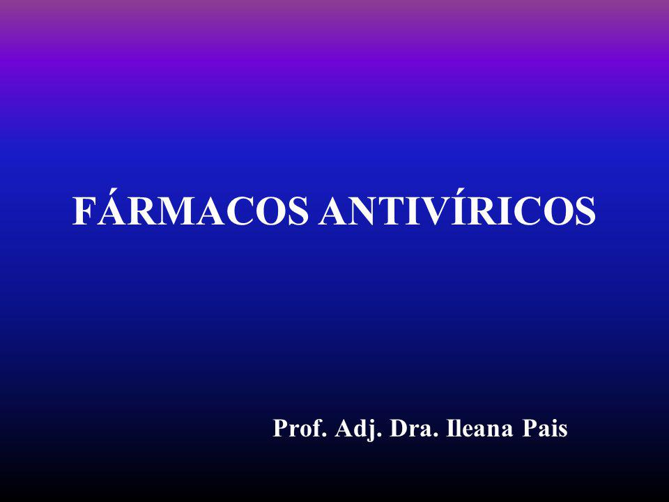 Prof. Adj. Dra. Ileana Pais