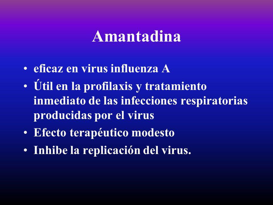 Amantadina eficaz en virus influenza A