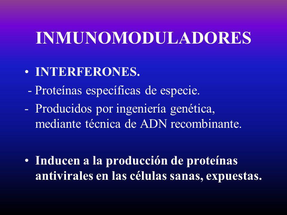 INMUNOMODULADORES INTERFERONES. - Proteínas específicas de especie.