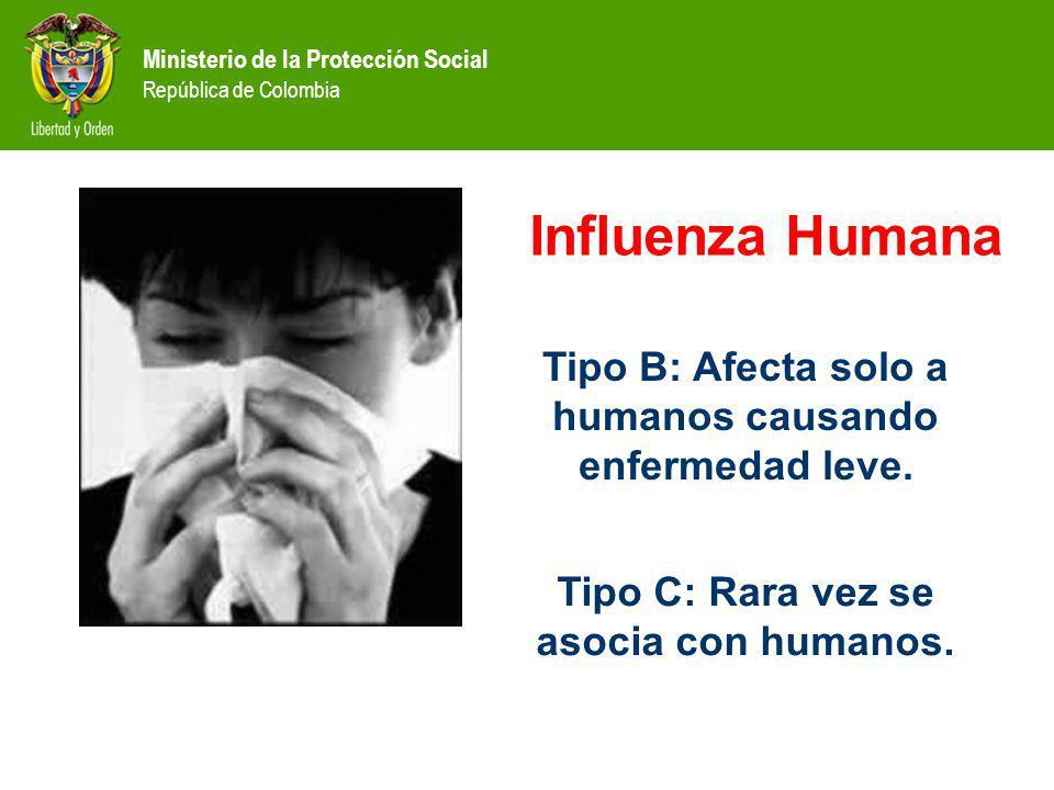 Influenza Humana Tipo B: Afecta solo a humanos causando enfermedad leve.