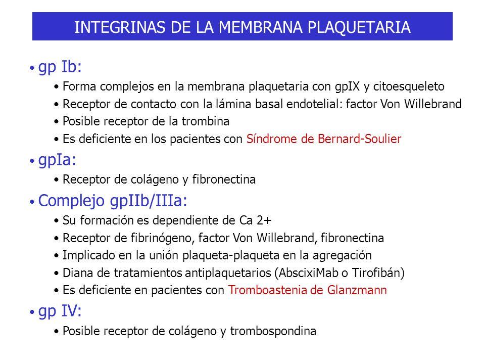 INTEGRINAS DE LA MEMBRANA PLAQUETARIA