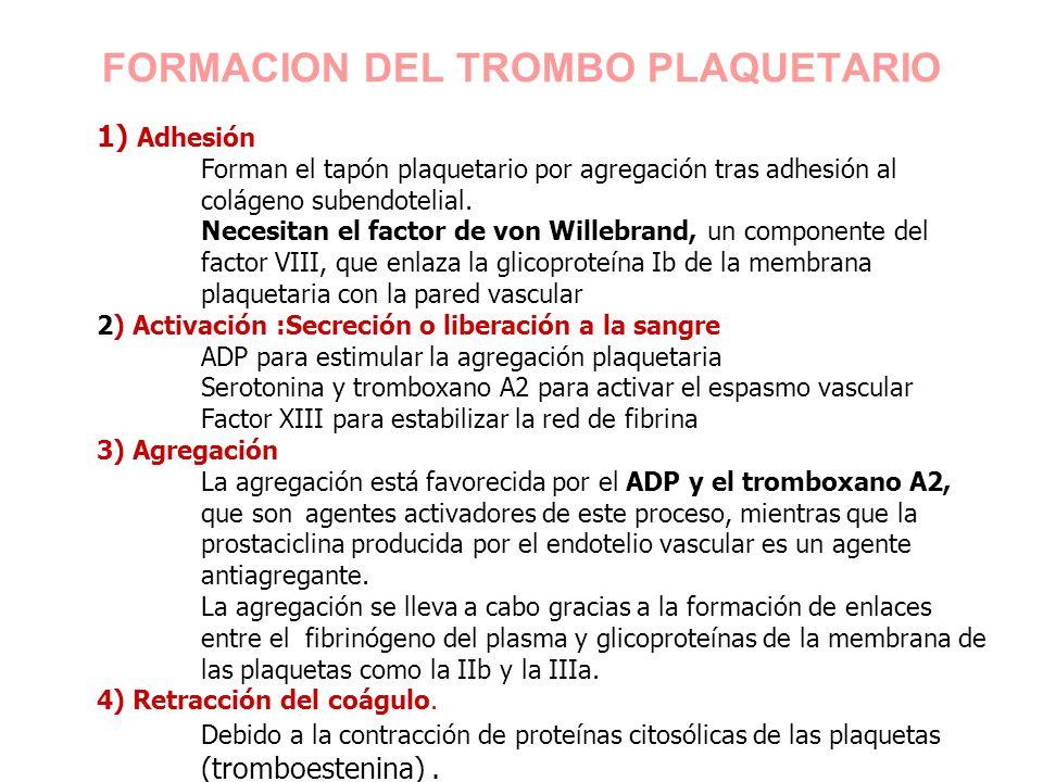 FORMACION DEL TROMBO PLAQUETARIO