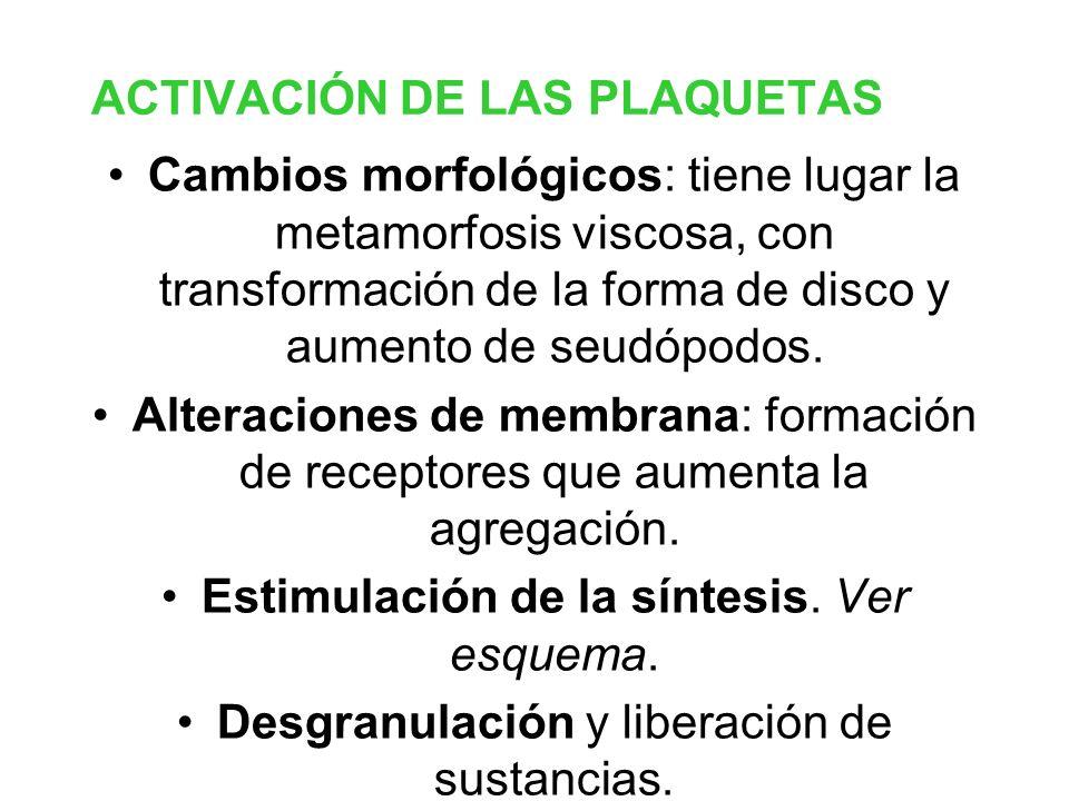 ACTIVACIÓN DE LAS PLAQUETAS