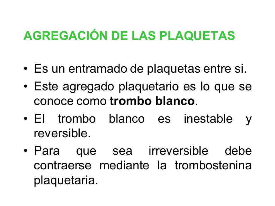 AGREGACIÓN DE LAS PLAQUETAS