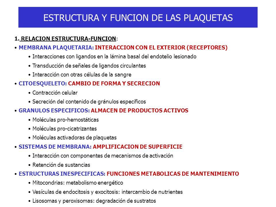ESTRUCTURA Y FUNCION DE LAS PLAQUETAS