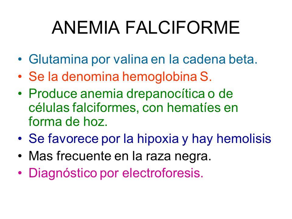 ANEMIA FALCIFORME Glutamina por valina en la cadena beta.