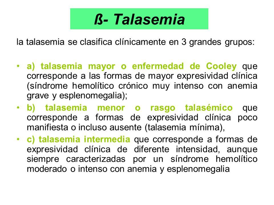 ß- Talasemia la talasemia se clasifica clínicamente en 3 grandes grupos: