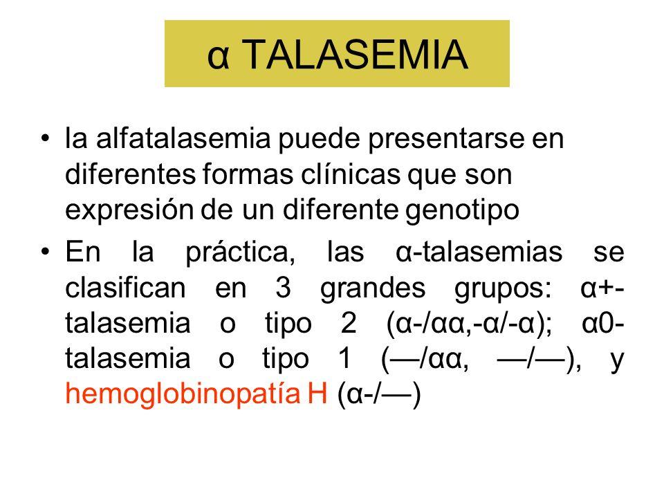 α TALASEMIA la alfatalasemia puede presentarse en diferentes formas clínicas que son expresión de un diferente genotipo.