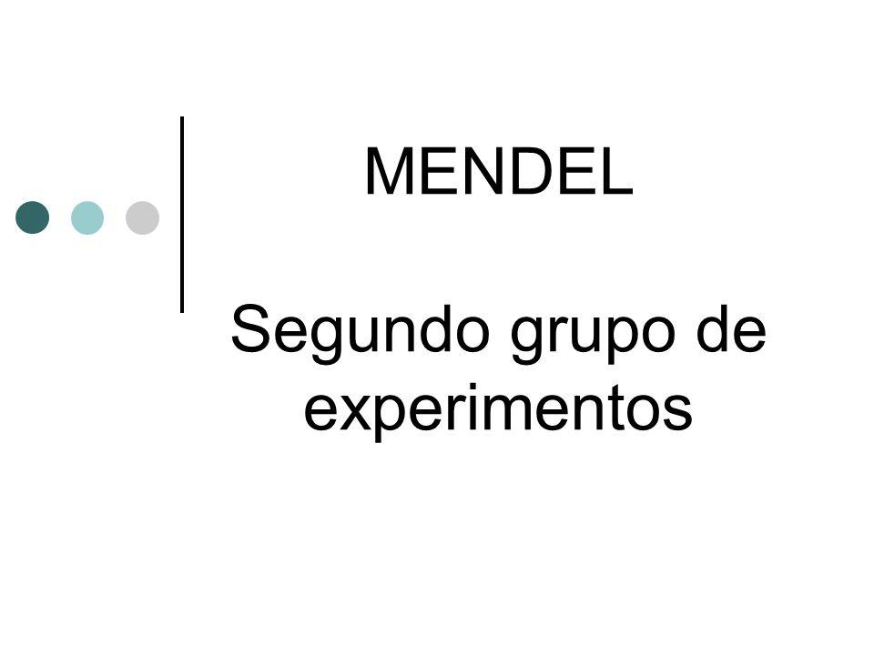 MENDEL Segundo grupo de experimentos