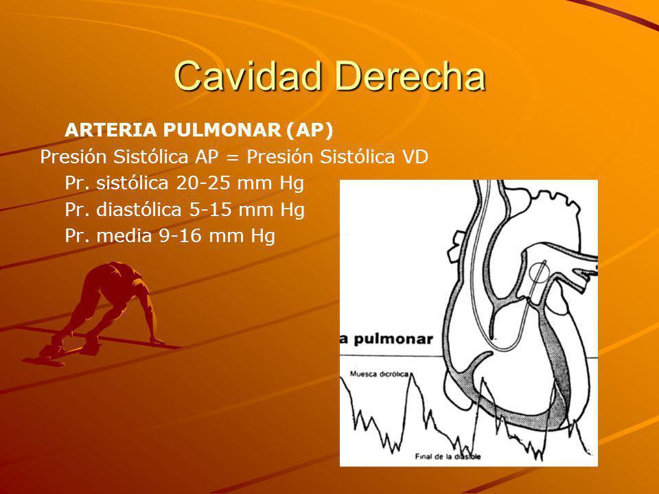 Cavidad Derecha ARTERIA PULMONAR (AP)