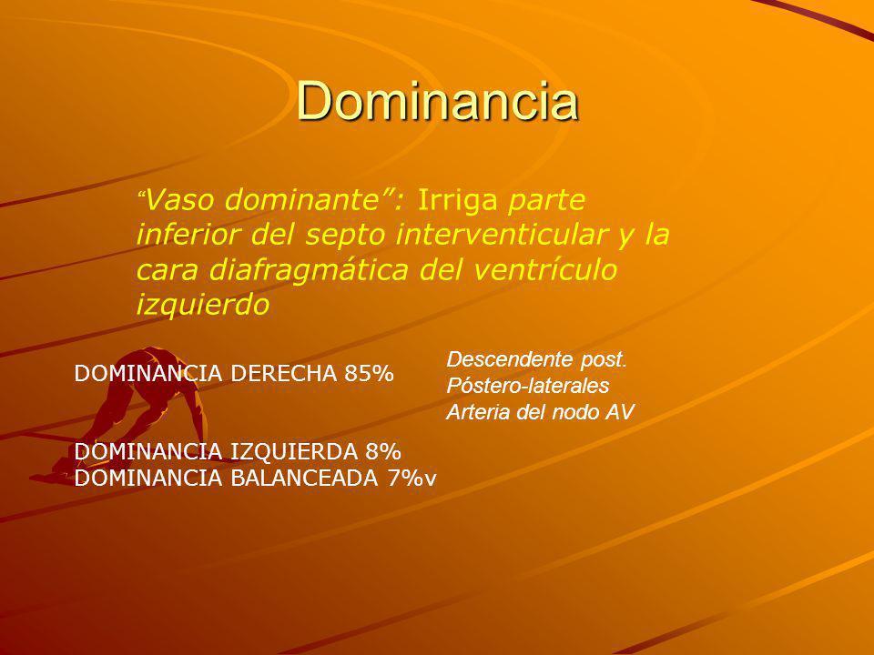 Dominancia Vaso dominante : Irriga parte inferior del septo interventicular y la cara diafragmática del ventrículo izquierdo.