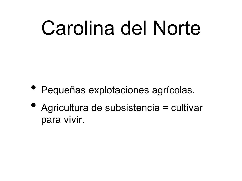 Carolina del Norte Pequeñas explotaciones agrícolas.