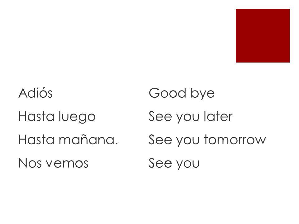 Adiós Hasta luego Hasta mañana