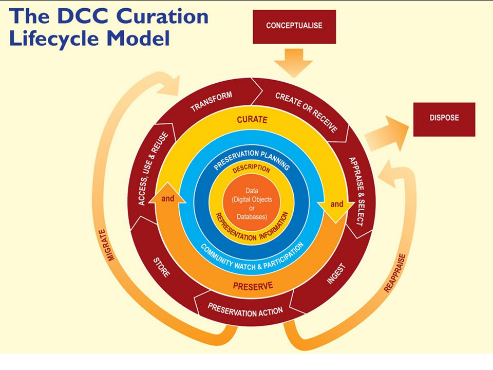 The Curation Lifecycle