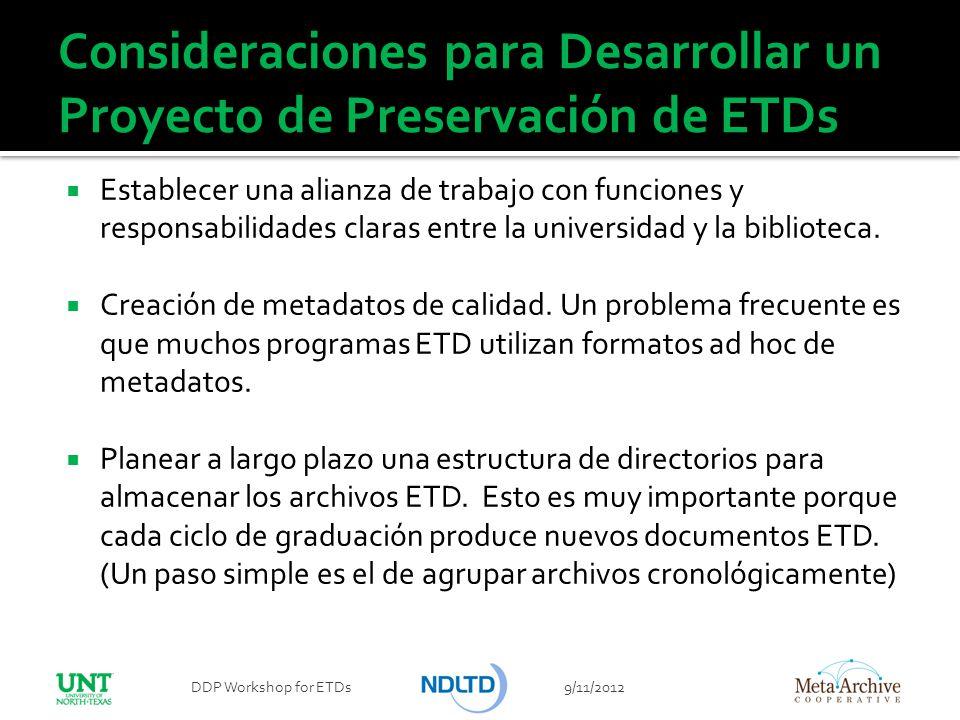 Consideraciones para Desarrollar un Proyecto de Preservación de ETDs