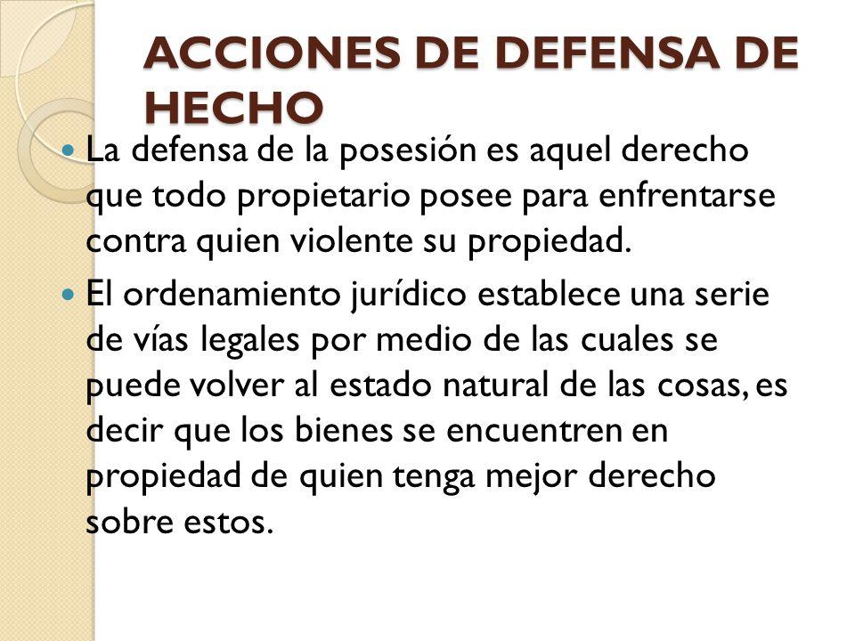 ACCIONES DE DEFENSA DE HECHO