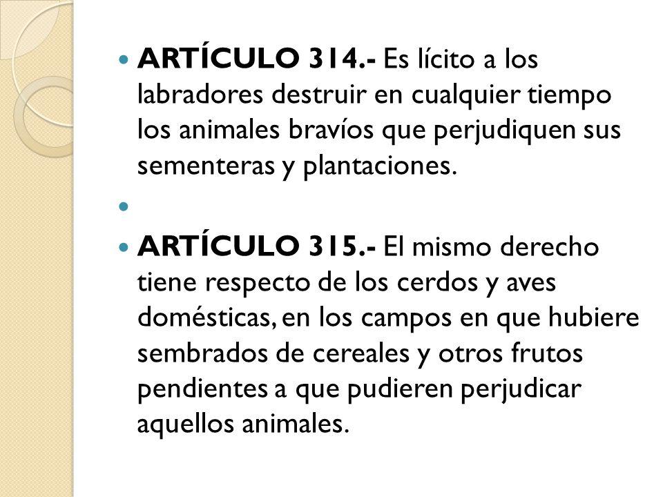 ARTÍCULO 314.- Es lícito a los labradores destruir en cualquier tiempo los animales bravíos que perjudiquen sus sementeras y plantaciones.